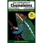 Picture of Care and Breeding of Chameleons