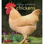 Picture of Choosing and keeping chickens