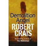 Picture of Demolition angel