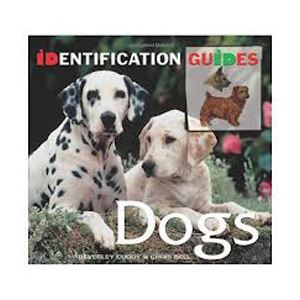 Picture of Dogs - identification