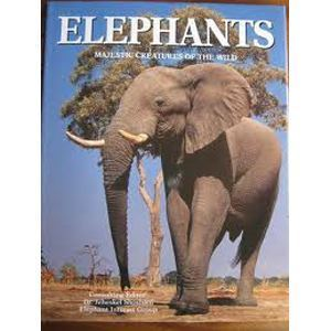 Picture of Elephants - majestic creatures of the wild