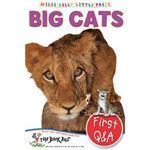 Picture of First Q&A - Big Cats
