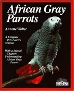 Picture of African Gray Parrots