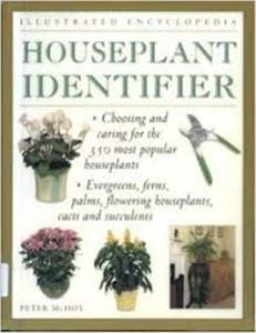 Picture of Houseplant Identifier