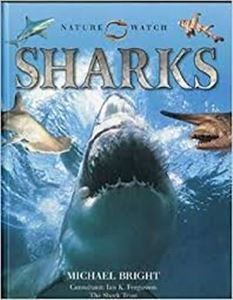 Picture of Nature Watch - Sharks
