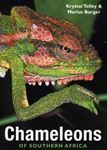 Picture of Chameleons of Southern Africa