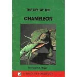 Picture of The Life of the Chameleon