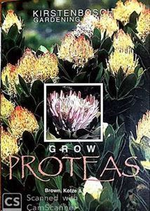 Picture of Grow Proteas
