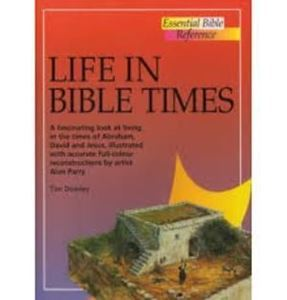 Picture of Life in Bible Times