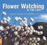 Picture of Flower Watching in the Cape