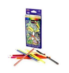 Picture of Rolfes Forest Colour Coloured Pencils (12)