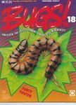 Picture of Bugs - 18