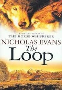 Picture of The Loop